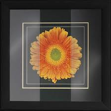 glazing glass plexiglass art