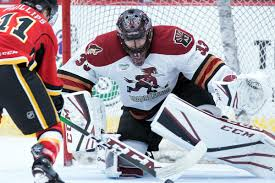 Roadrunners winning with full rotation in net | TheAHL.com | The American  Hockey League