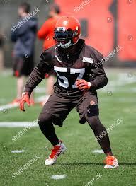 Cleveland Browns Adarius Taylor runs through drill Editorial Stock Photo -  Stock Image   Shutterstock