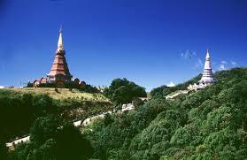 เที่ยวป่าดึกดำบรรพ์ที่ ดอยอินทนนท์ - Chiang Mai News