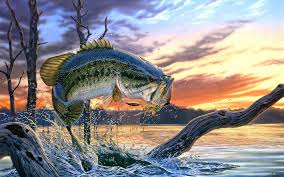 b fishing wallpapers for android