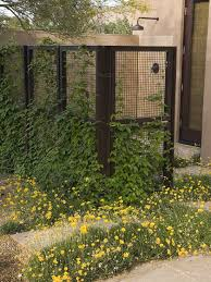 A Wire Fence Design Ideas Pictures Remodel And Decor Fence Design Screen Plants Contemporary Landscape