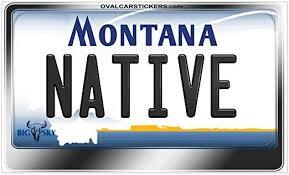 Amazon Com Cafepress Montana License Plate Native Sticker Rectangl Rectangle Bumper Sticker Car Decal Home Kitchen