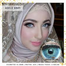 Jual Lensa Kontak Softlens Pretty Doll lens Adele Gray / abu - Jakarta  Barat - kharisma378   Tokopedia