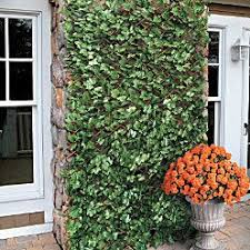 Expandable Faux Ivy Trellis Trellis Privacy Screen Outdoor Outdoor Privacy