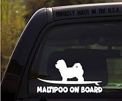 Amazon Com Ohiodecals Com Maltipoo On Board Funny Dog Breed Decal Sticker For Car Or Truck Window Automotive