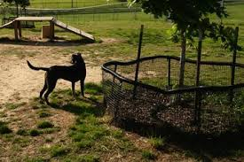 Off Leash Dog Parks In Germantown Tn Bringfido