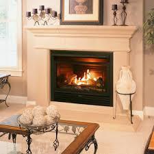btu ventless dual fuel fireplace insert
