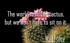 the world is full of cactus new quotes status