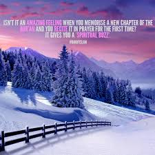 islamic quotes winter scenery winter pictures winter landscape