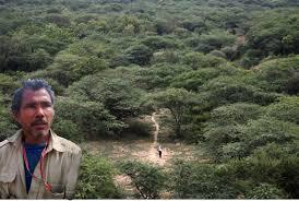 "Padma Shri Jadav ""Molai"" Payeng – The Forest Man Of India     Deccan Abroad"