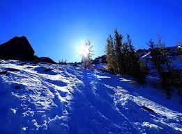تحميل خلفيات الثلوج الشتاء هيل الأشجار المناظر الطبيعية عريضة