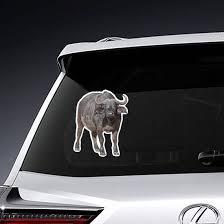 Large African Cape Buffalo Sticker