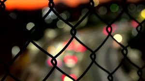 3 042 Wire Mesh Fence Videos And Hd Footage Getty Images