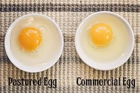 your eggs