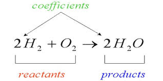a chemical equation assignment point