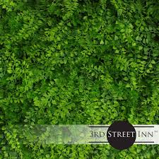 3rd Street Inn Artificial Hedge Outdoor Artificial Plant Great Boxwood And Ivy Substitute Sound Diffuser Privacy Fence Hedge Topiary Greenery Panels 4 Juniper Walmart Com Walmart Com