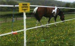 Pony Electric Fence Starter Kits Countrystoredirect