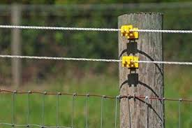 2020 Invisible Electric Fence Cost Dog Fence Per Foot Homeadvisor