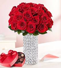 two dozen romantic red roses and