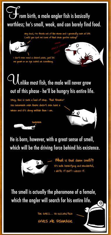 Angler Fish Reproduction