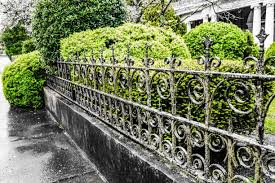 85 Background Of Wrought Iron Fence Ideas Stock Photos Pictures Royalty Free Images Istock