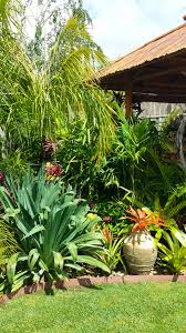 daniel s tropical garden in australia