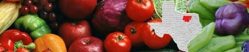 north texas vegetable gardeners blog