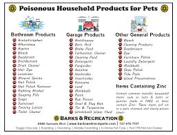 pet poisoning prevention emergency