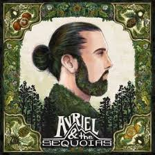 Avi Kaplan Albums: songs, discography, biography, and listening guide -  Rate Your Music