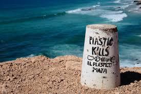 melawan polusi plastik di hari lingkungan hidup sedunia ateja news