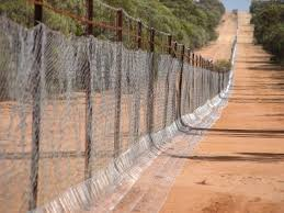 Wa S Historic State Barrier Fence To Be Extended 660km Grain Central