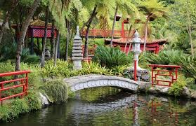 bridge japanese garden chinese