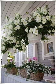 well tended hanging baskets full of