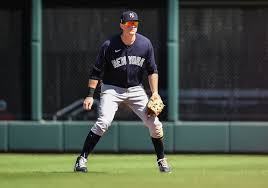 DJ LeMahieu works overtime in push to make Yankees Opening Day ...