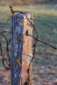 Close Up Of Old Wooden Fence Post With Barbed Wire In The Early Stock Photo Picture And Royalty Free Image Image 2205235
