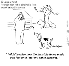 Electric Fences If When Your Dog Runs Through How Does It Get Back In Without A Shock What Is Keeping Other Invisible Fence Dog Runs How Are You Feeling