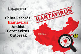 Hantavirus In China Transmitted By Rodents
