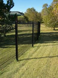 Phoenix Fence Ornamental Residential Iron Eagle Omega Fence Non Stock Special Order