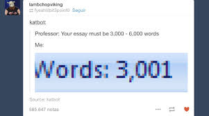 writing an essay can t argue with