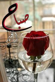 صباح الخير ورد جوري صور صباح الخير صباح الورد صباح الحب رسائل