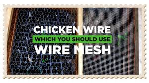 Chicken Wire Vs Wire Mesh Which You Should Choose Youtube
