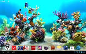 3d aquarium live wallpaper s eee pad