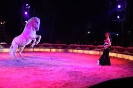 "The Circus ""NO SPIN ZONE"": Adriana Falco"