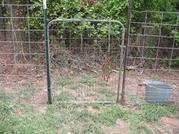 T Post Fence With Conduit Fence Wire Fence Welded Wire Fence T Post Fence