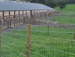 High Tensile Field Fence Strong Yet Light Weight Hengshui Worldbid B2b Market