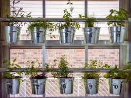 hanging herb garden ideas to grow