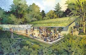 p san francisco botanical garden at