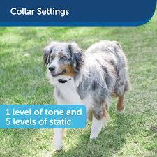 Amazon Com Petsafe Free To Roam Fence Receiver Collar For Dogs And Cats Waterproof Tone And Static Correction Petsafe Pet Supplies