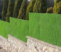 Grass Fence Covering However Some Producers Are Also By Grass Fence Panel Medium